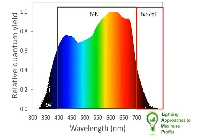 Colores luz artifical