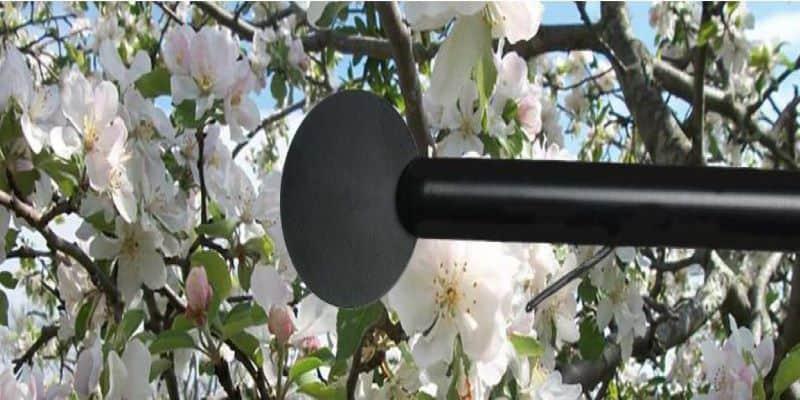 Sensor de heladas de radiación