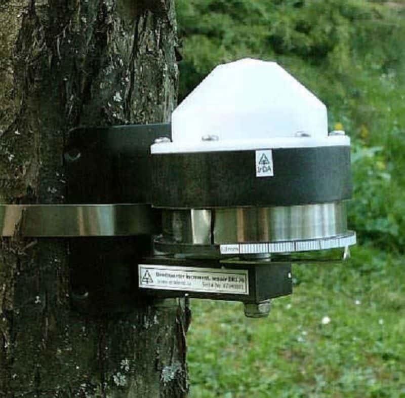 Dendrómetro de Cinta para Medir la Variación del Diámetro de Tronco DRL26 de EMS Brno para realizar el seguimiento del cambio en el diámetro de troncos de árboles.