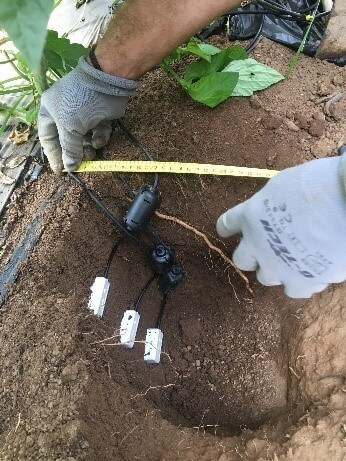 perfil sondas humedad suelo