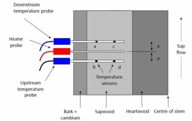 sensor flujo savia sfm1 hrm esquema funcionamiento