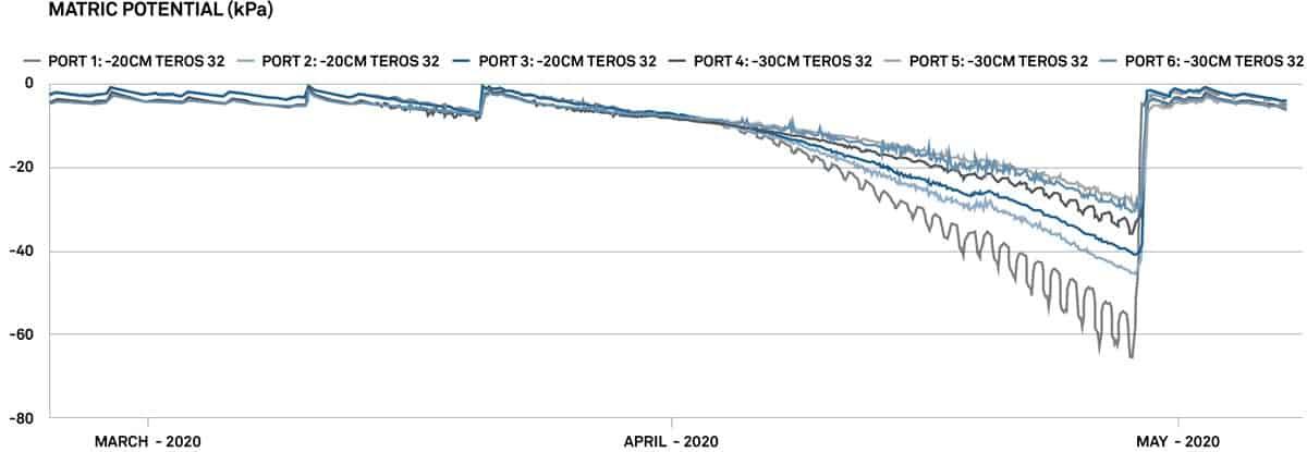 Tensiómetro Electrónico de precisión para campo TEROS 32 grafica